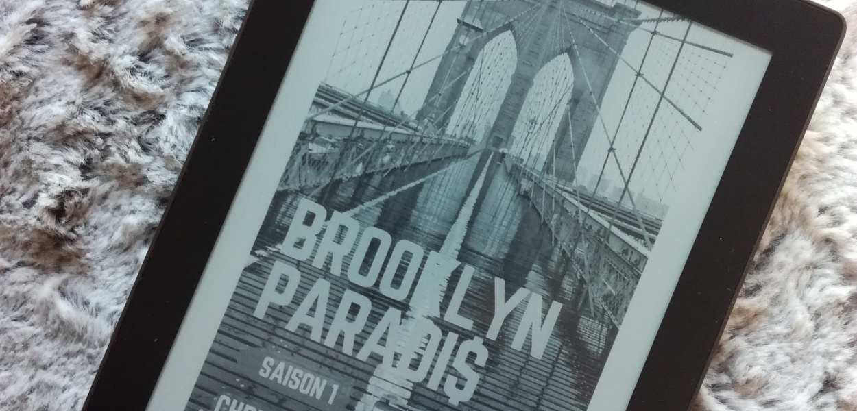 Brooklyn Paradi$ chris simon avis book'n'series