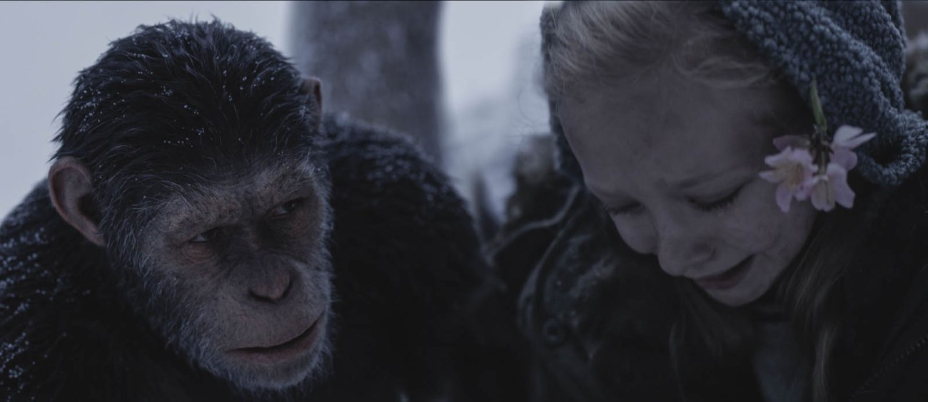 La planète des singes 8