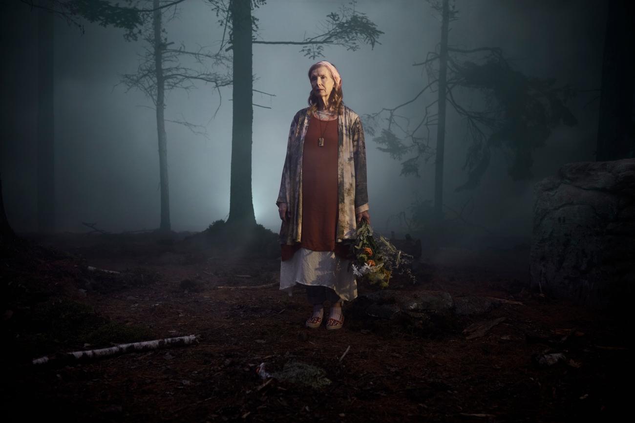 the-mist-tv-series-12.jpg