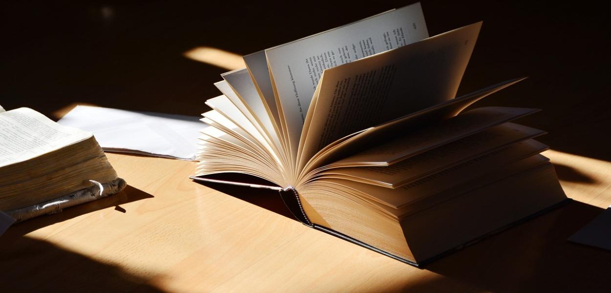 top-flop-litterature