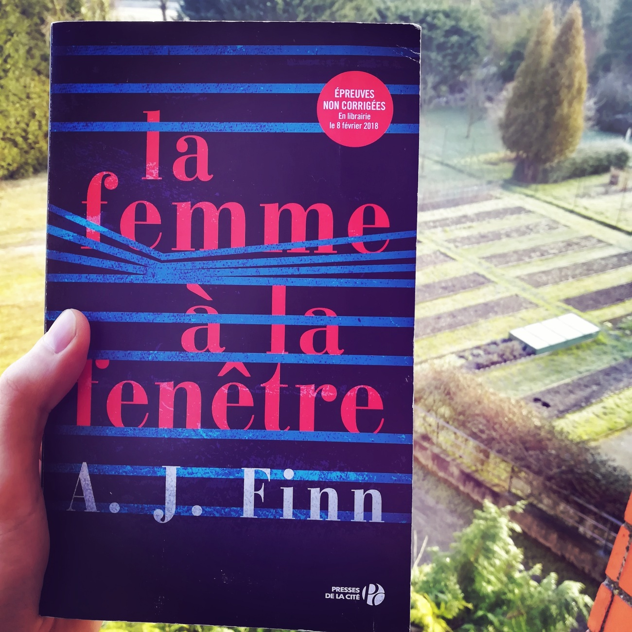 tomabooks-la-femme-a-la-fenetre-aj-finn