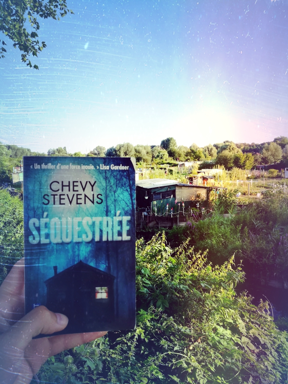 tomabooks-chevy-stevens-sequestree