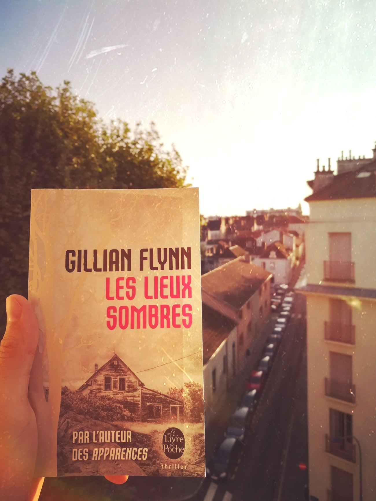 tomabooks-gillian-flynn-les-lieux-sombres