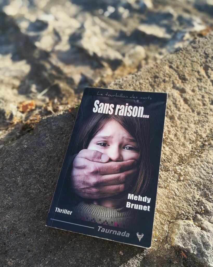 sans-raison-mehdy-brunet-editions-taurnada