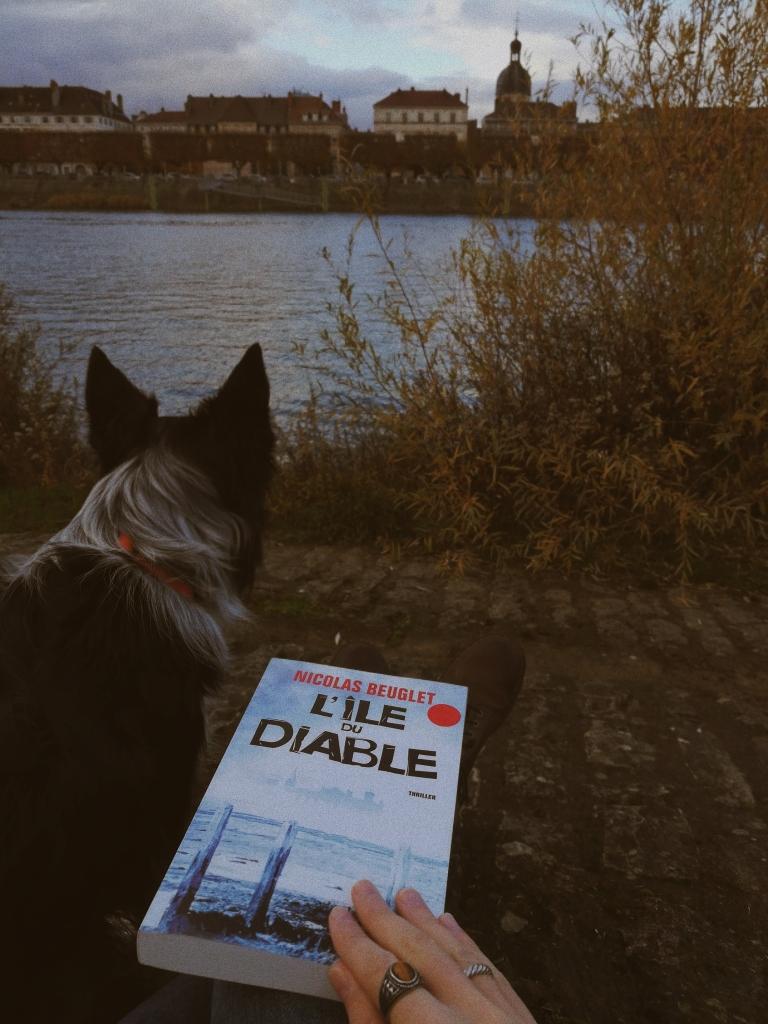 avis sur le roman lile-du-diable-nicolas-beuglet