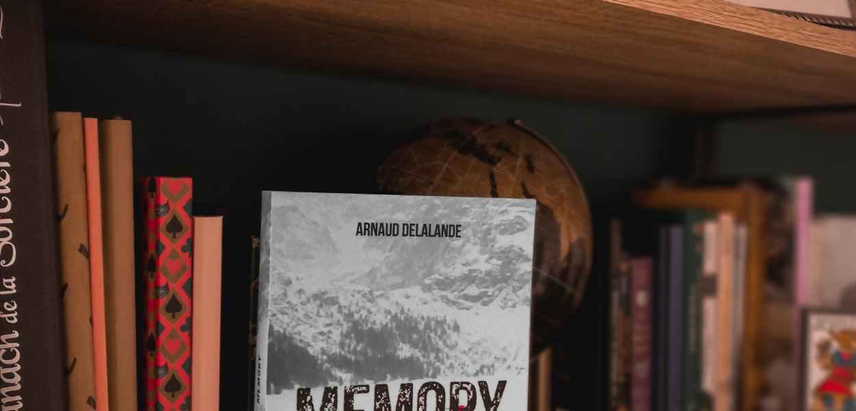 avis sur Memory d'Arnaud Delalande